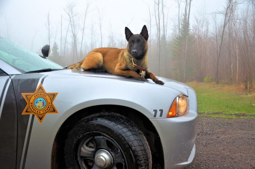 K-9 - Douglas County Sheriff WI